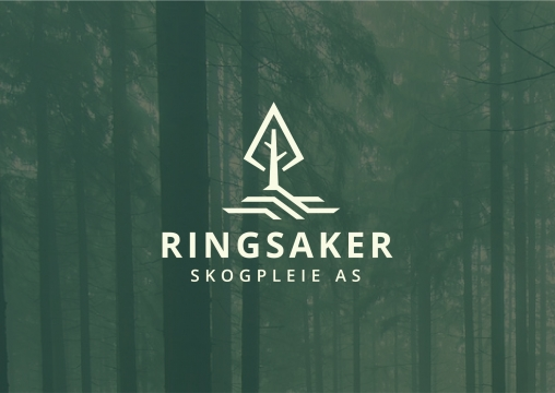 Ringsaker corporate style development