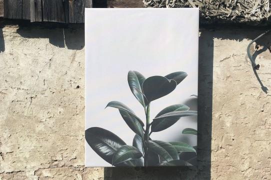 Photo painting printing